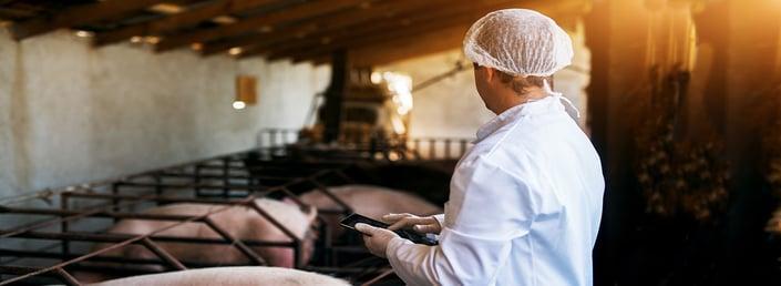 Supervisión de la calidad en una granja productora